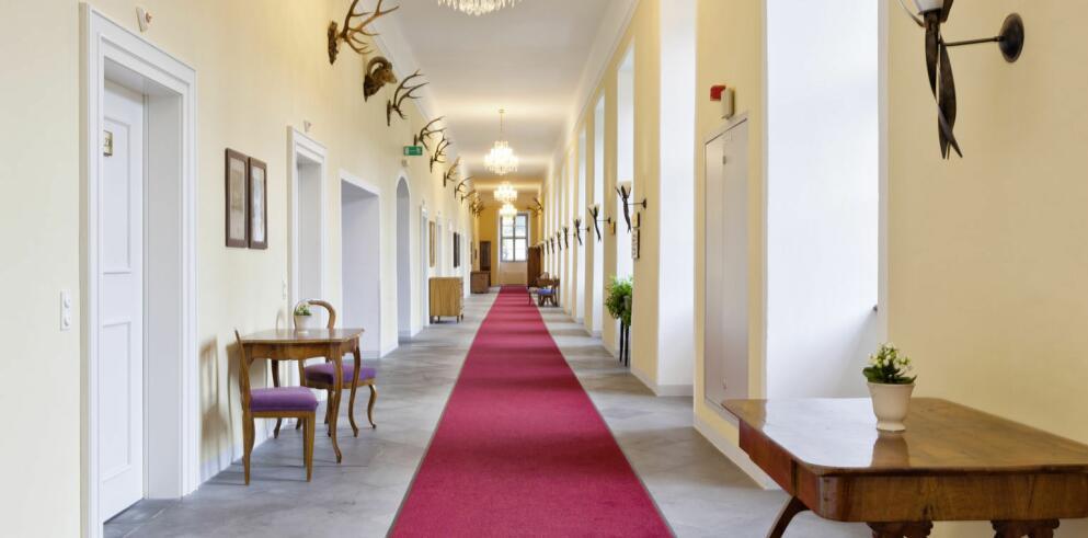 Schlosshotel Mondsee 10095
