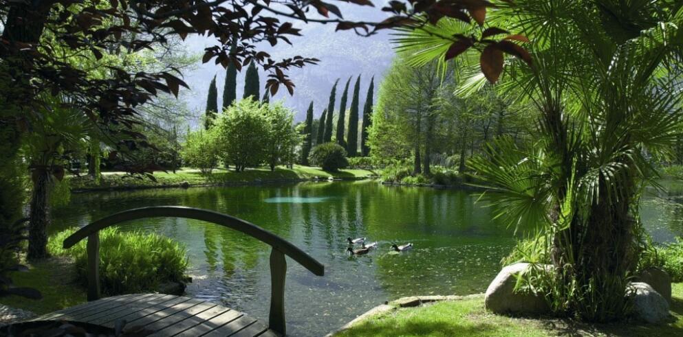 Du Lac et Du Parc Grand Resort 1069