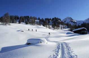 Idyllischer Urlaub in den Bergen rund um das malerische Großarltal
