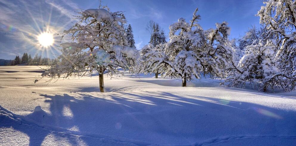 Hotel Ludwig Royal 10887