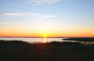 Erholung in einzigartiger Naturidylle und frischer Ostseeluft auf Usedom