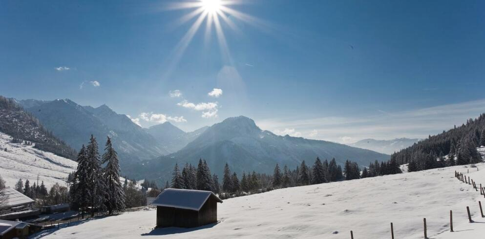 Panoramahotel Oberjoch 11146
