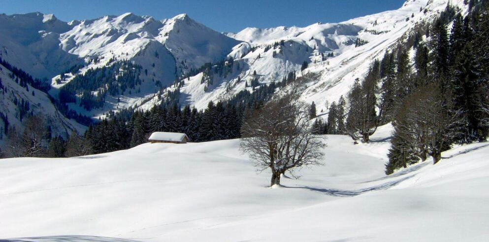 Panoramahotel Oberjoch 11147