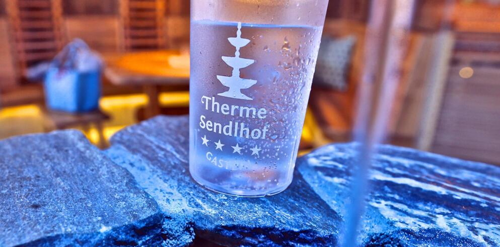 Thermenhotel Sendlhof 11566