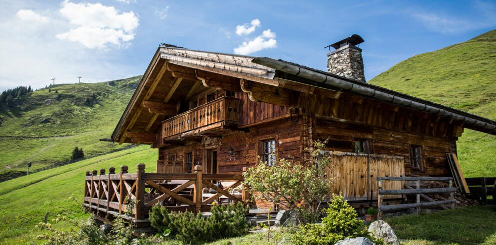 The Alpine Palace 11623