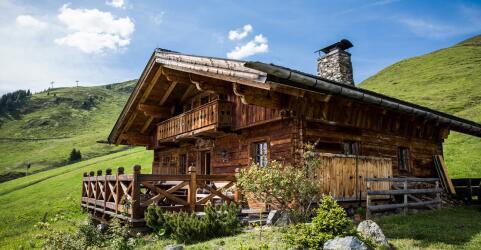 The Alpine Palace 14