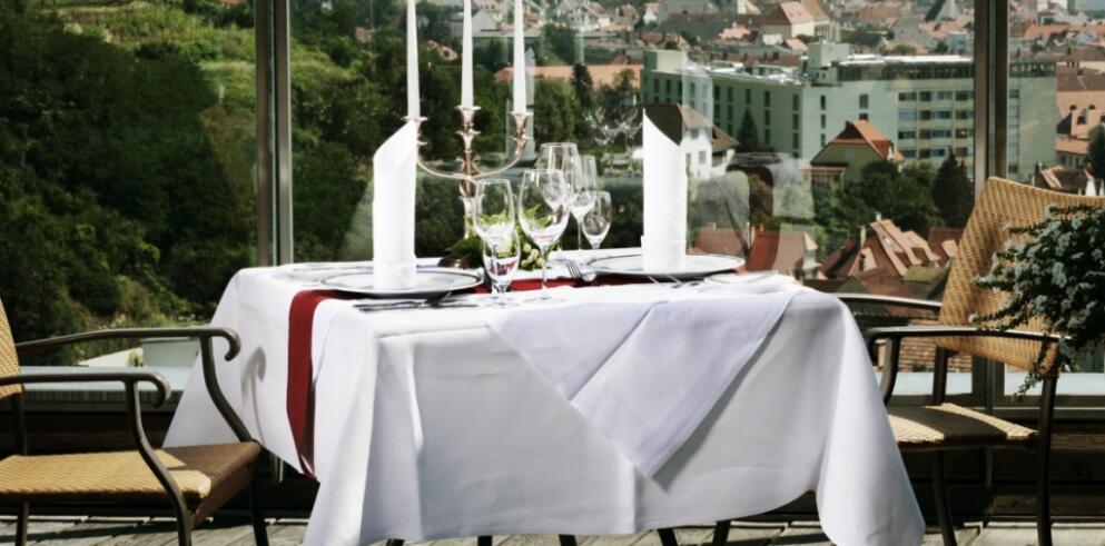 Steigenberger Hotel and Spa Krems 13562