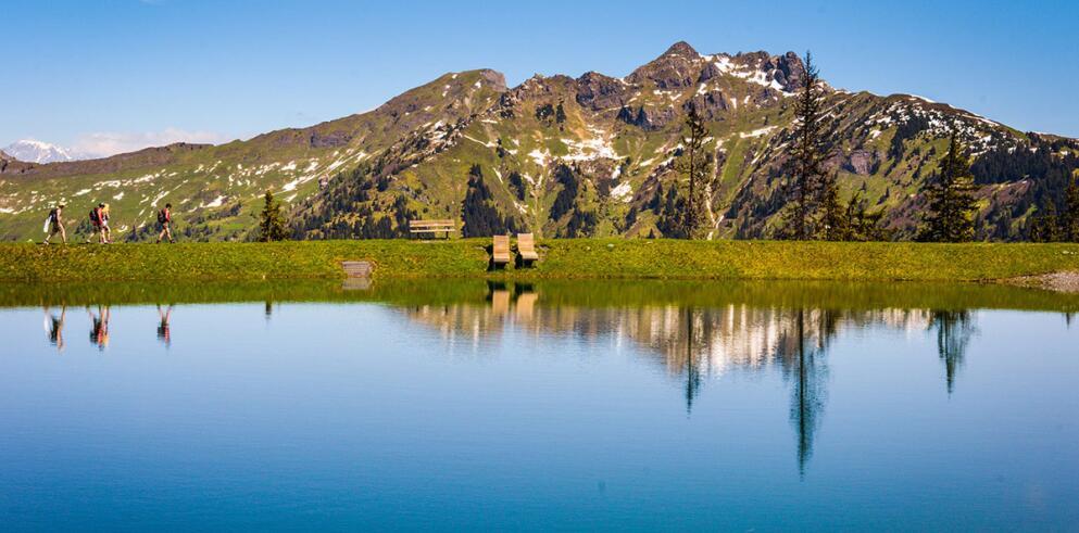Impuls Hotel Tirol 13789