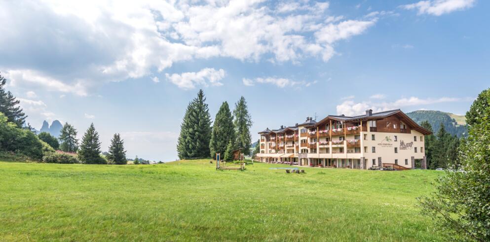 Hotel Steger-Dellai 14006