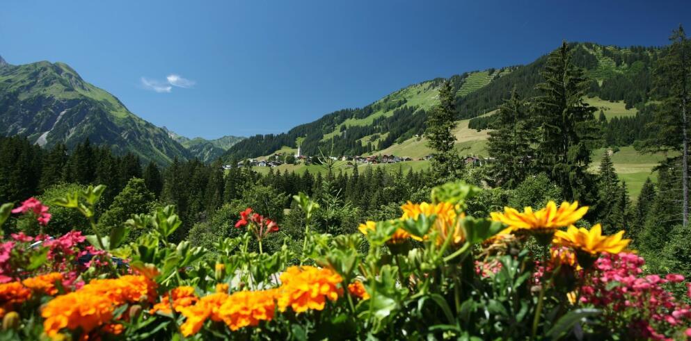 IFA Alpenhof Wildental 14517