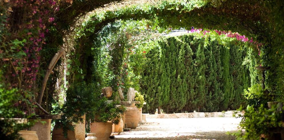 Agroturismo Es Revellar Art Resort 14593