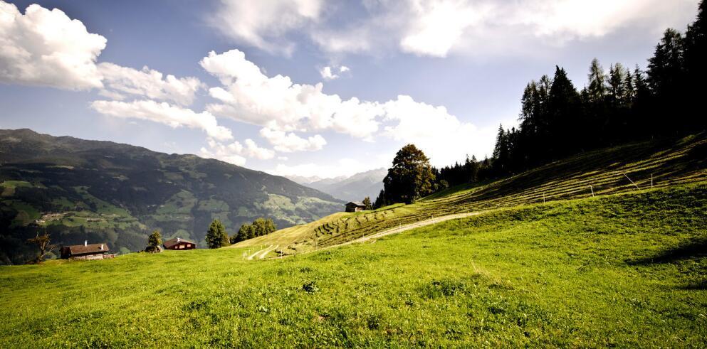 Hotel Zum Senner Zillertal - Adults only 14789