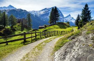 Wellnessurlaub mit Gourmet-Genuss im Herzen des Salzburger Landes