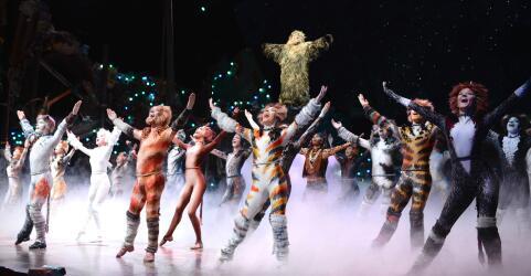 CATS - Das Original im Musical Dome Köln 7