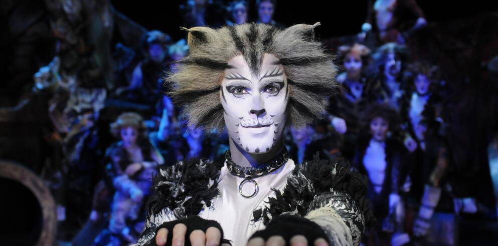 CATS - Das Original im Musical Dome Köln 17191