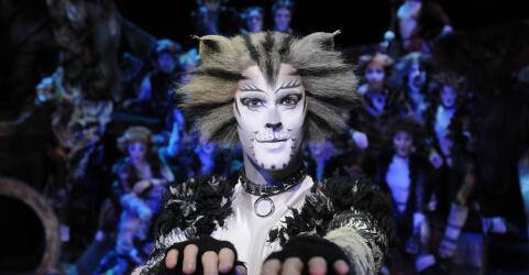CATS - Das Original im Musical Dome Köln 1