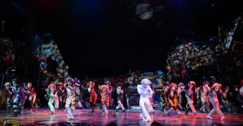 CATS - Das Original im Musical Dome Köln 11