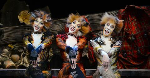 CATS - Das Original im Musical Dome Köln 4