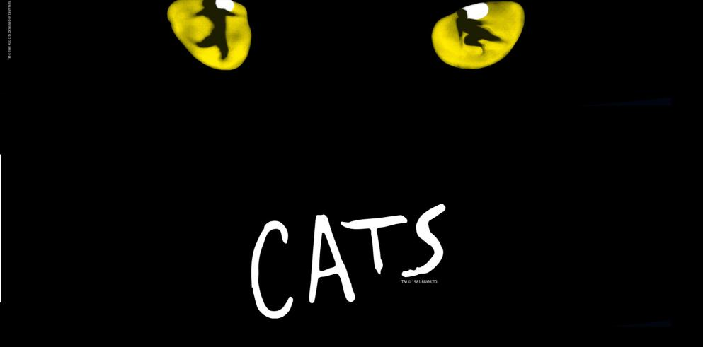 CATS - Das Original im Musical Dome Köln 17197