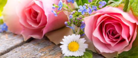 Bunter Blumenstrauß auf dem Zimmer
