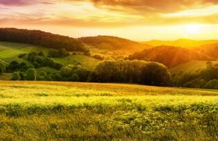 Im Einklang mit der Natur - Die Vielfalt des Thüringer Waldes erleben
