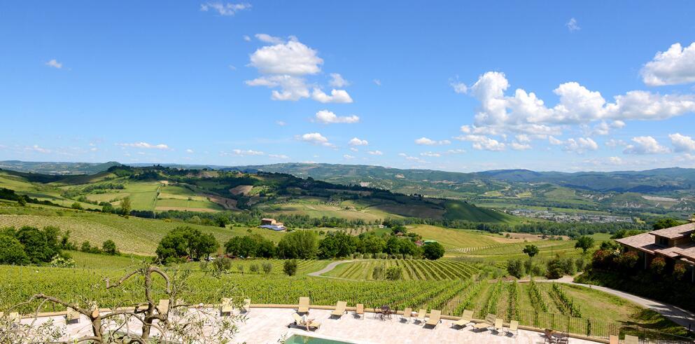 Altarocca Wine Resort 19924
