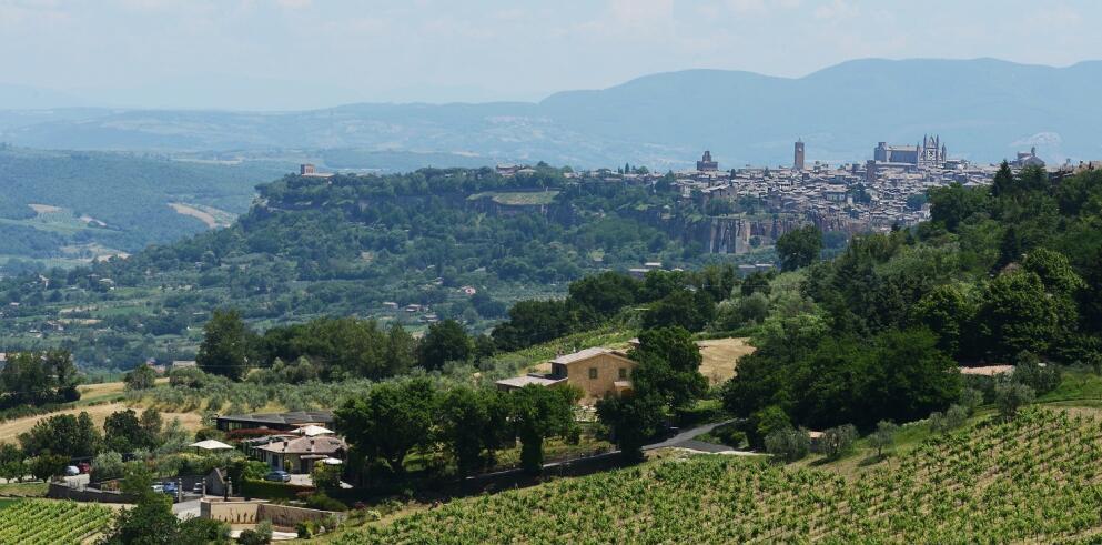Altarocca Wine Resort 20028