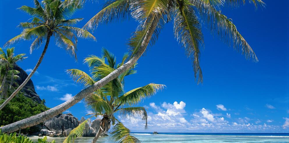 Segelkreuzfahrt – Seychellen 20338