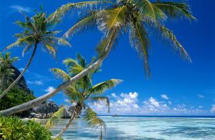 Mit dem Segelkatamaran zu den schönsten Stränden und Buchten der Inseln
