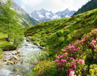 Tal in Tirol