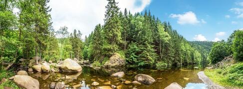 Wellness im Harz
