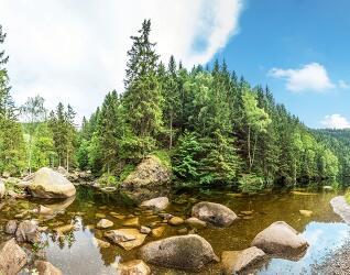 Wellness Harz