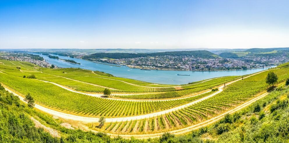 Rhein in Flammen 2018 in Koblenz 22118