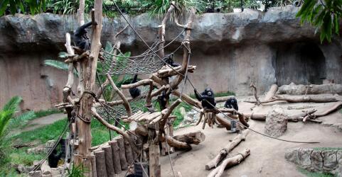 Zoo Leipzig 2