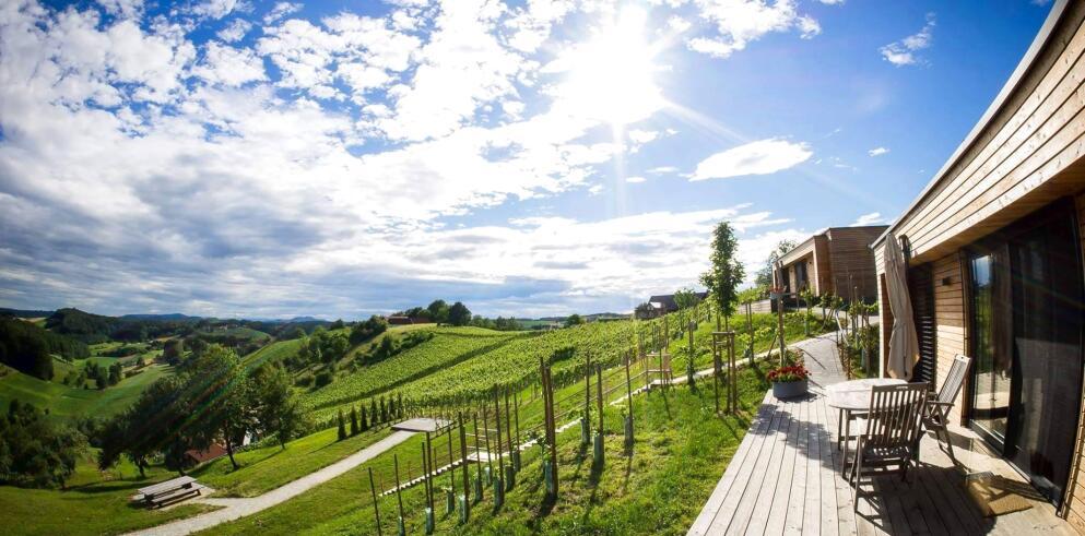 Weingarten-Resort Unterlamm Loipersdorf 22371