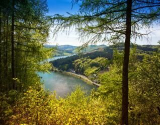 Sauerland Wellness
