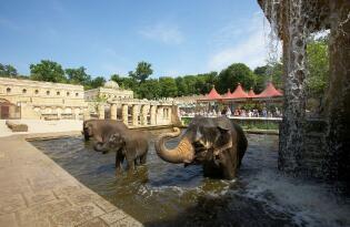 Traumhafte Themenwelten und faszinierende Tierbegegnungen