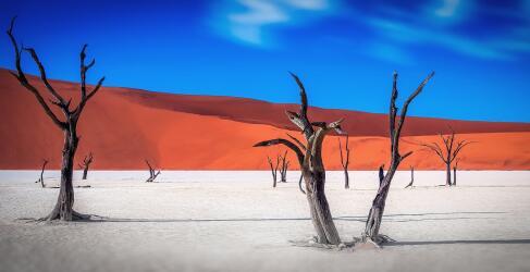Namibia Rundreise Wüste