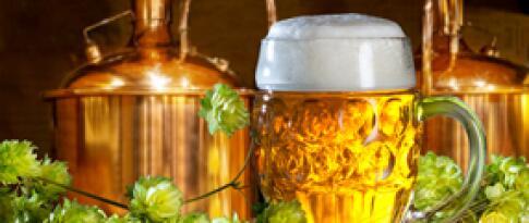 Holländische Bitterballen und lokales Bier
