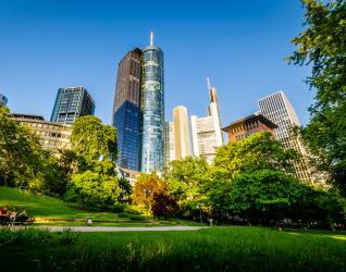 Park in Frankfurt am Main