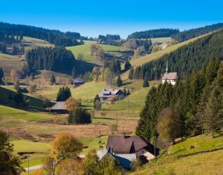 Wellness im Schwarzwald im Sommer