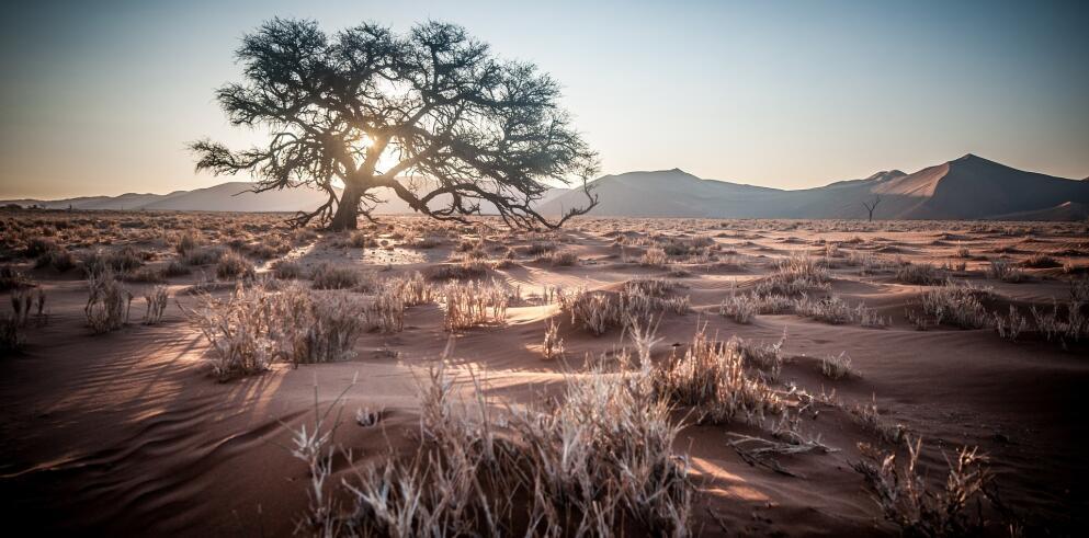 13 Tage Namibia Rundreise 32115