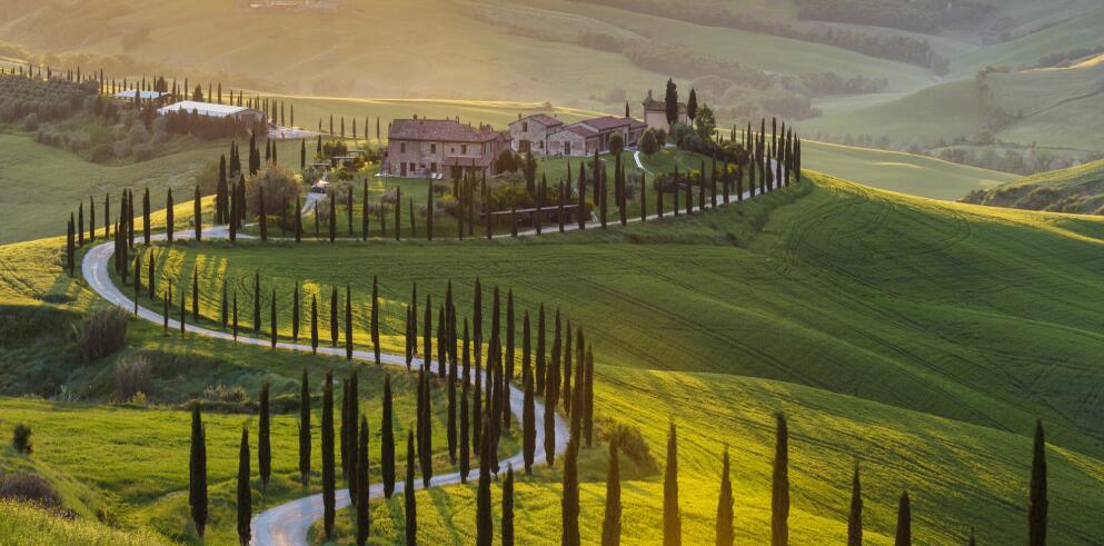 Weinreise Italien 32219
