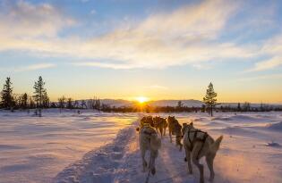 Unvergessliche Abenteuer und nordische Schönheiten in Island / Grönland
