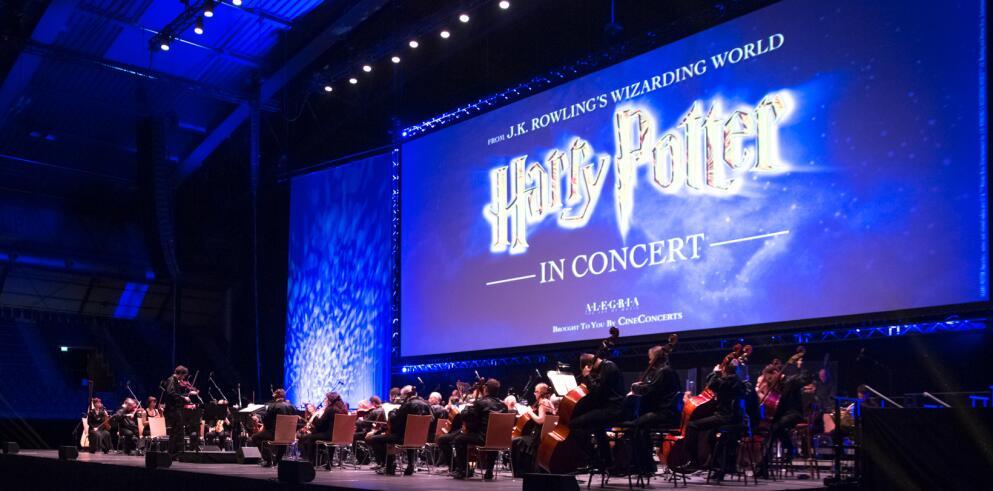 Harry Potter und der Stein der Weisen - In Concert - Hamburg 38066