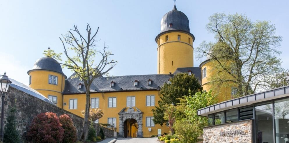 Hotel Schloss Montabaur 3911