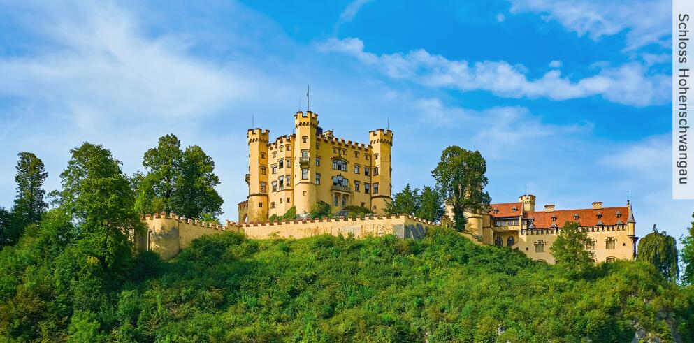 Schloss Neuschwanstein und Hohenschwangau 40166