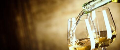 Eine Weinverkostung in der Kellerei Custoza