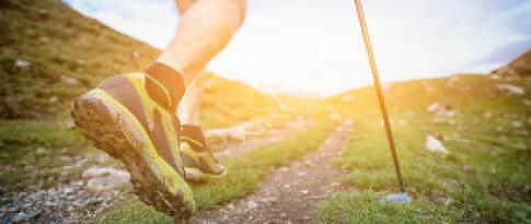 Verleih von Nordic Walking Stöcken