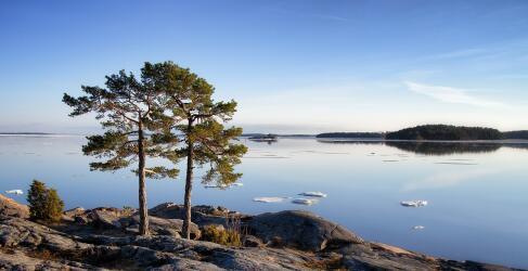 Vega Archipel Norwegen Rundreise